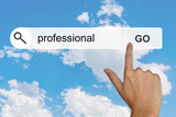 professional on search toolbar poster