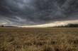 canvas print picture - Stoppelfeld und aufziehendes Unwetter