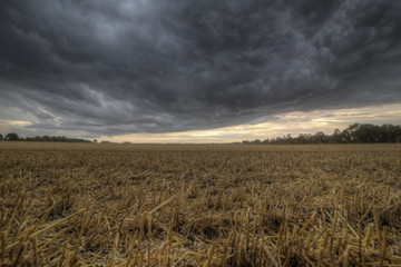Stoppelfeld und aufziehendes Unwetter
