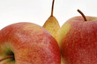 canvas print picture - Apfel und Birne