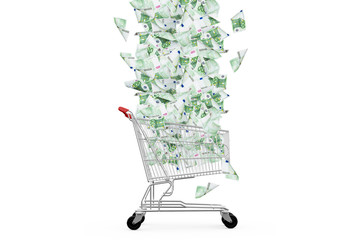 Euro Banknotes Falling Down to Shopping Cart