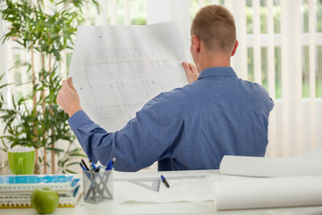 Rear view of a young business man analyzing graphs in his office