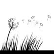 Ichthys Pusteblume