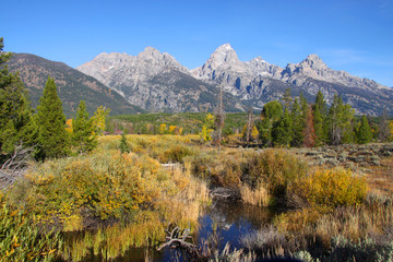 Picture perfect Grand Tetons