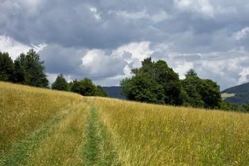 Slovakian landscape