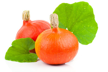 yellow pumpkins vegetables with green leaves isolated on white b