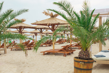 beach near the sea with a thatched umbrellas