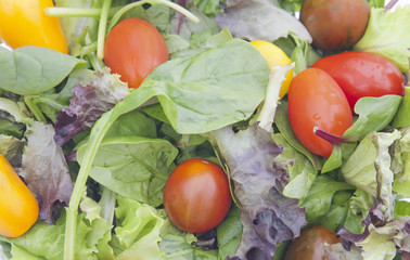 Healthy Fresh Salad background