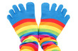 canvas print picture - colored socks
