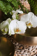 canvas print picture - Klangschalen Orchidee