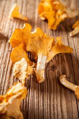 Golden chanterelles on wooden planks