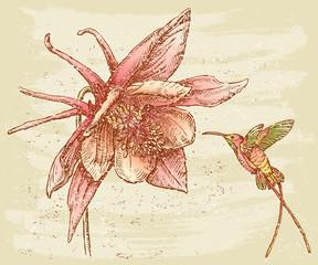 Flower nd bird