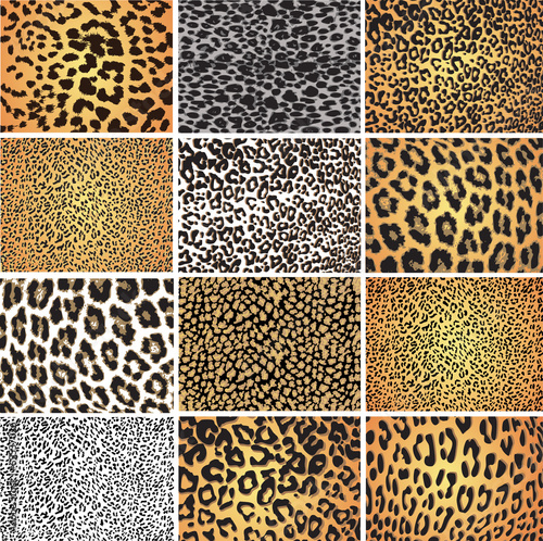 Spoed canvasdoek 2cm dik Kunstmatig Animal skin fur vector pack leopard zebra