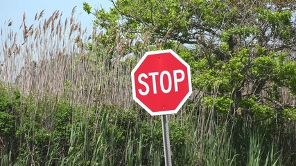 Stop Signs, Halt, Warnings, Traffic Safety