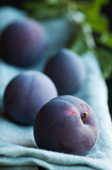 Freshly Picked Plums