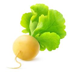 Turnip over white background