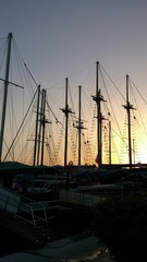 Masts in sunset time