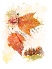 Watercolor Image Of  Autumn