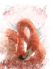 Watercolor Image Of  Flamingo Bird
