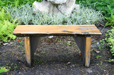 Wood Bench in a park