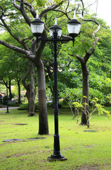 electric light in a beautiful park