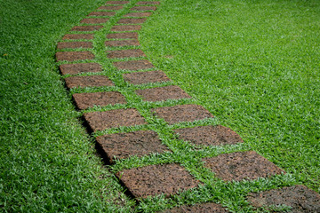 Curve dot rock on green grass in garden