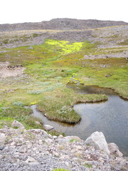 Paysage d'Islande 2