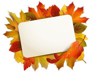 Board umrandet mit Herbstblättern