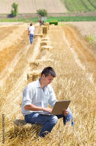 Harvesting - 69544079
