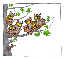 Cartoon Owls on a tree in white background.