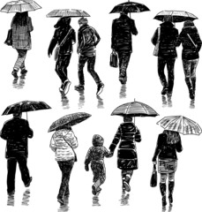 people under umbrellas