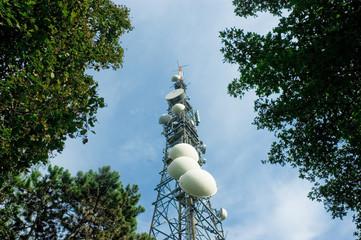 antenna tra gli alberi