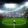 canvas print picture - soccer field center and ball