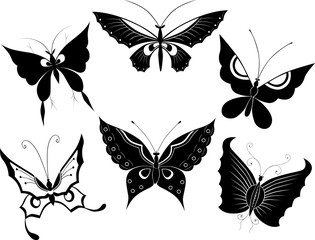 silhouettes of the  butterflies