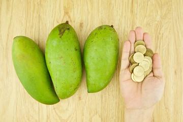 Man buying mangifera indica or mango by gold coin