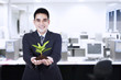 Businessman with small plant