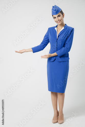 Charming Stewardess Dressed In Blue Uniform - 69555071