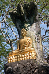 One of the statues of Buddha in Luang Prabang
