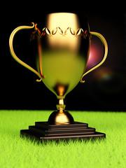 Winner trophy