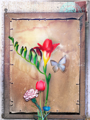 Background with freesia and others flowers in old frame
