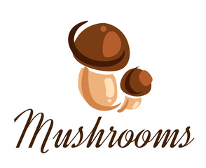 Fresh forest mushrooms