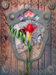 Wood background with decorative frame and freesia flower