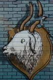 Ram mural graffiti on the textured wall - 69557401