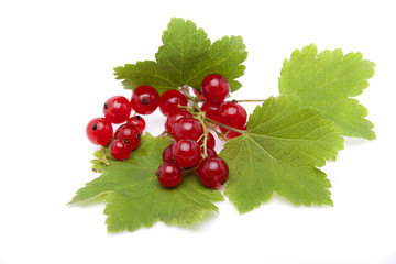 Red currant berries lying on the leaves of currants on a white b