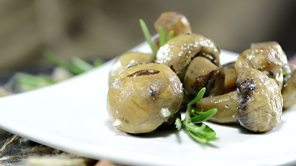 Grilled Mushrooms (loopable video)