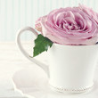 Cup filled with a bouquet of romantic pink roses2