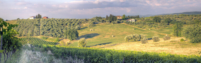 Panorama of a Tuscan sunset landscape3