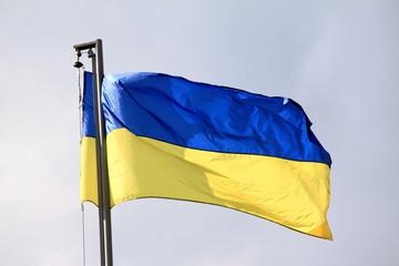 Ukraine flag waving on the wind