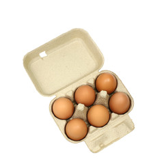 Six brown eggs in a carton package isolated with clipping path