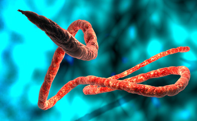 3d Digital illustration of Ebola virus, Microscopic view.